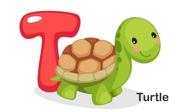 T para tartaruga Vetor Premium