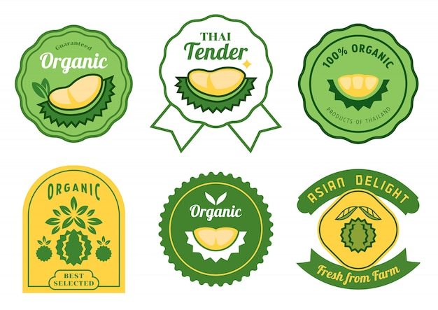 Tailandês durian adesivos Vetor Premium
