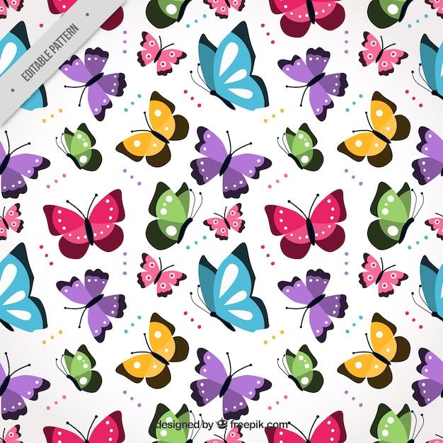 Teste padrão colorido com borboletas voando planas Vetor Premium
