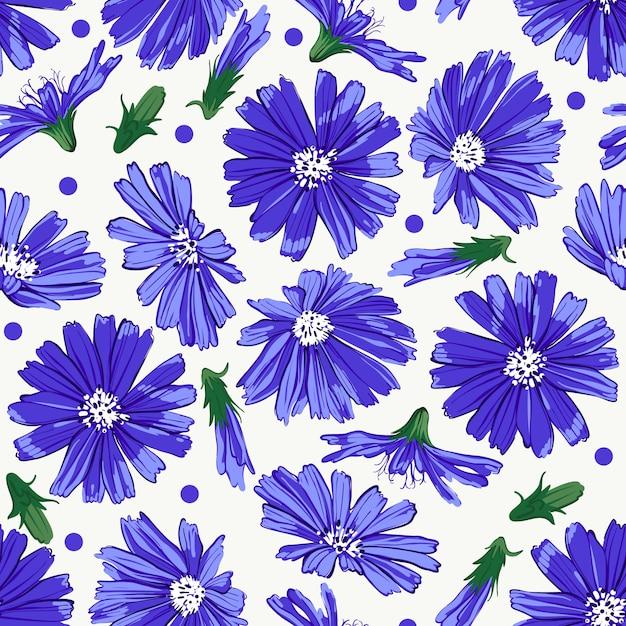Teste padrão floral sem costura com chicória. Vetor Premium