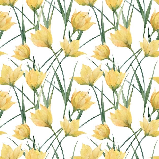 Teste padrão floral sem costura com tulipas selvagens Vetor Premium