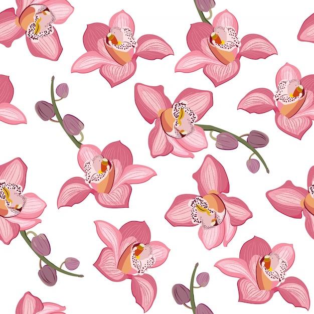 Teste padrão sem emenda floral da orquídea cor-de-rosa. flores florescem flor folhagem Vetor Premium