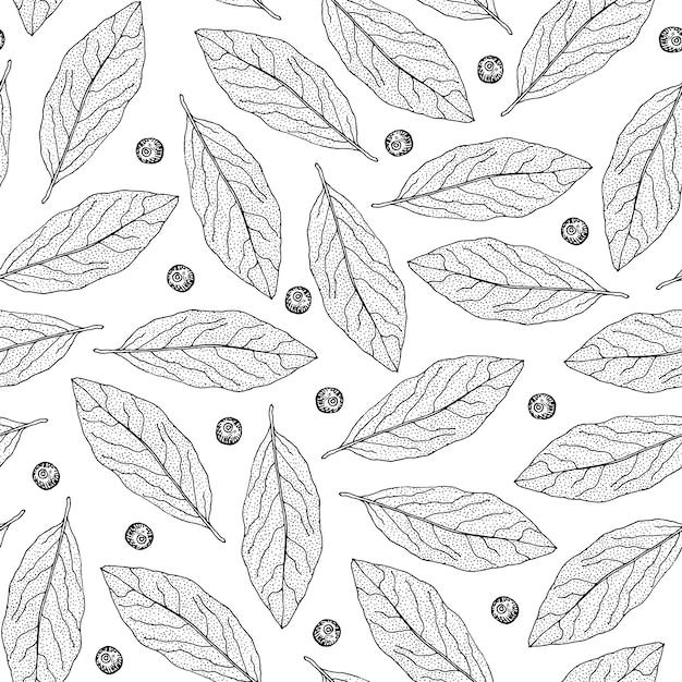 Teste padrão sem emenda mão desenhada com folhas de louro e pimenta da jamaica. Vetor Premium