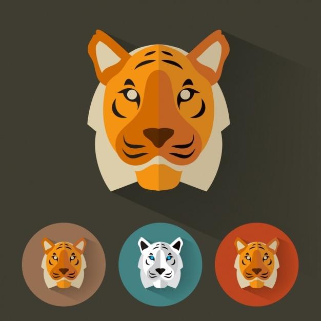 Tiger projeta a coleção Vetor grátis