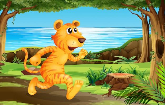 Tigre correndo no parque Vetor grátis