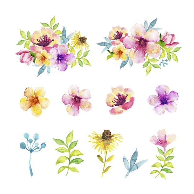 Tipo diferente de flores e folhas no efeito de aquarela Vetor grátis