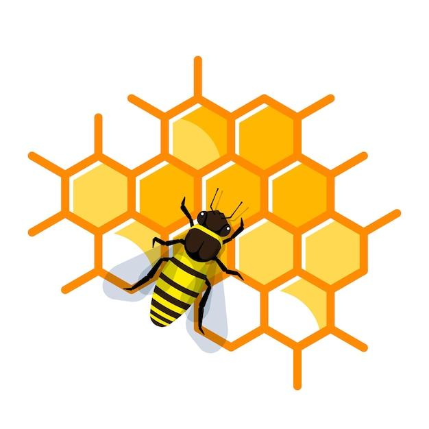 Trabalho de abelha no favo de mel cheio de mel. abelha fazendo mel e própolis. Vetor Premium