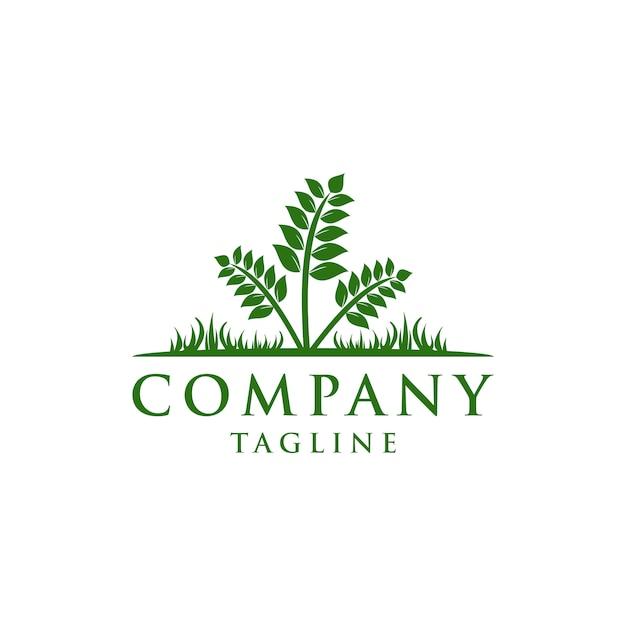 Tree leaf vector icon modelo de design de ilustração Vetor Premium