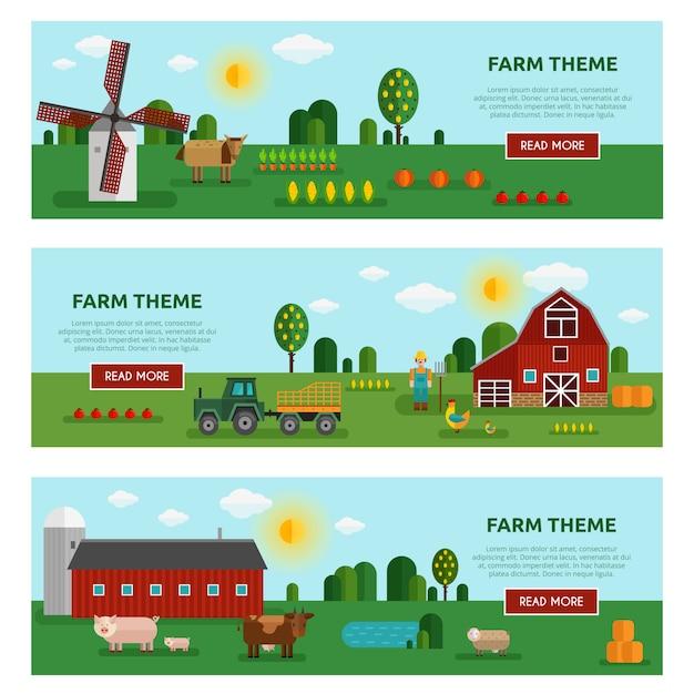 Três horizontais coloridos plana fazenda legumes banner conjunto com descrições de temas de fazenda Vetor grátis