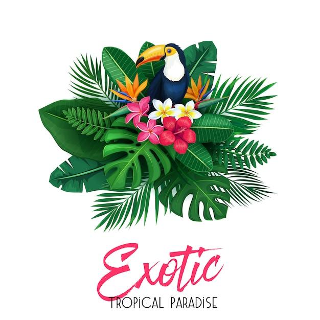 Tropical com tucano Vetor Premium