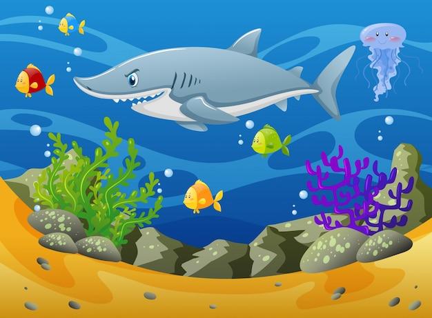 Tubarão e outros animais marinhos debaixo d'água Vetor grátis