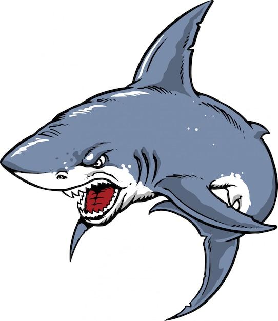Tubarão Vetor Premium