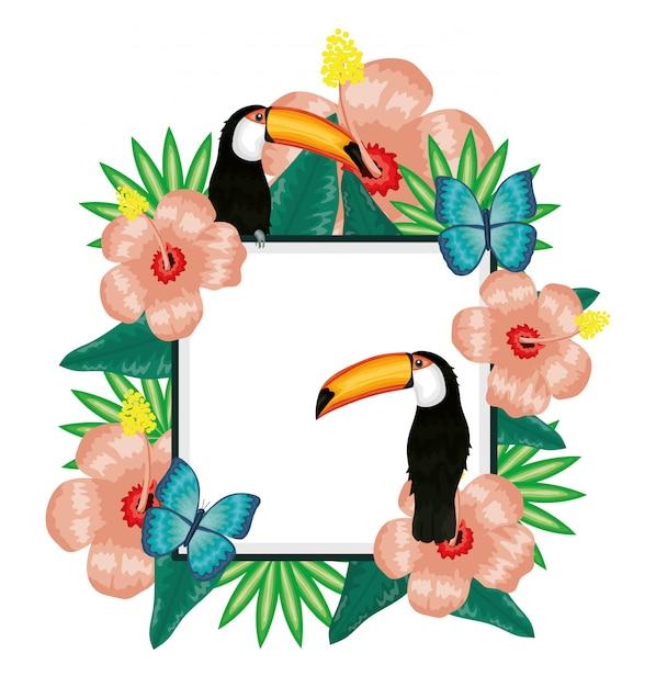 Tucano bonito e borboletas com decoração floral Vetor Premium