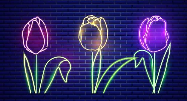 Tulipa flores luz de neon Vetor Premium