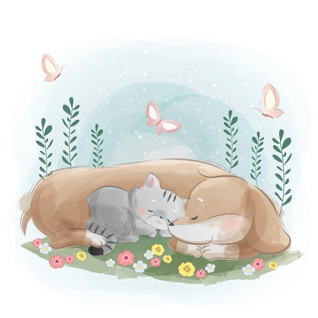 Um cão salsicha dormindo com o gatinho Vetor Premium