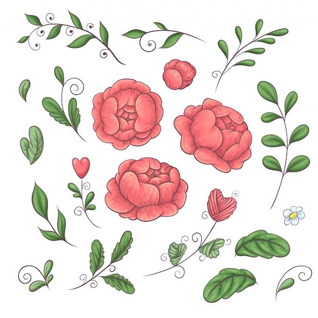 Um conjunto de peônias e elementos florais Vetor Premium