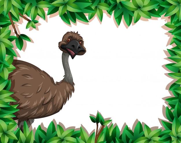 Um emu no quadro da natureza Vetor grátis