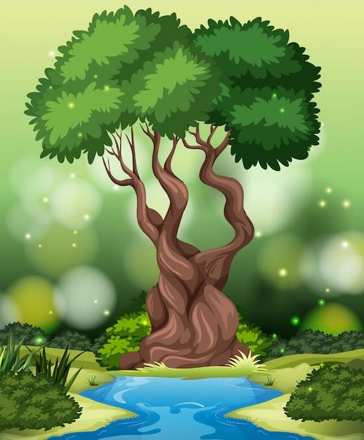 Um fundo de floresta tropical Vetor grátis