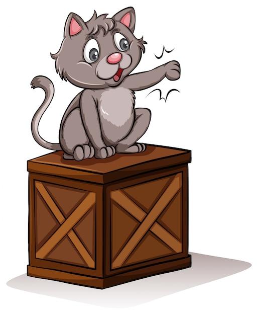 Um gato acima da caixa Vetor grátis
