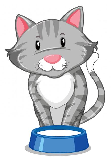Um gato cinzento com bandeja de comida Vetor grátis