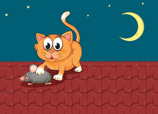 Um gato e um rato no telhado Vetor grátis