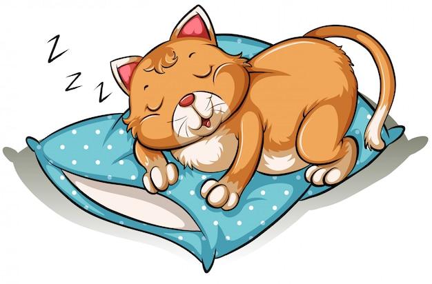 Um gato tirando uma soneca Vetor Premium