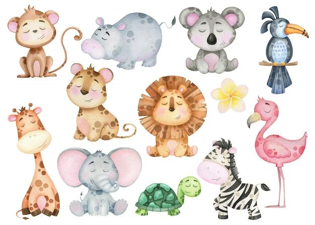 Um grande conjunto de bebês de animais exóticos tropicais dos desenhos animados. zebra, leão, macaco, flamingo. elementos em aquarela para design Vetor Premium