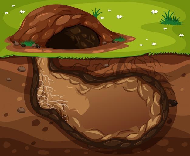 Um habitat subterrâneo animal Vetor Premium
