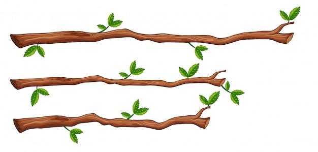 Um, jogo, de, filial árvore Vetor grátis