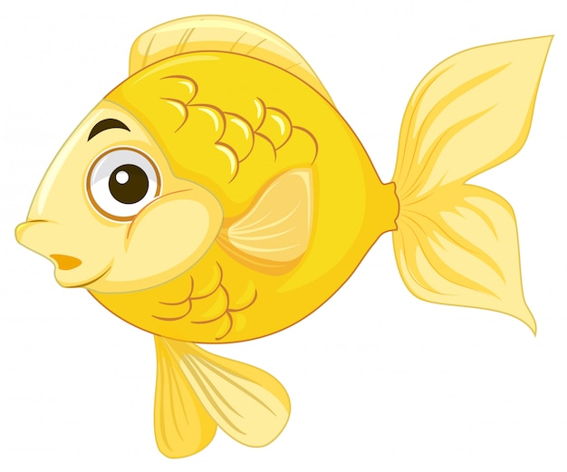 Um peixinho no fundo branco Vetor grátis