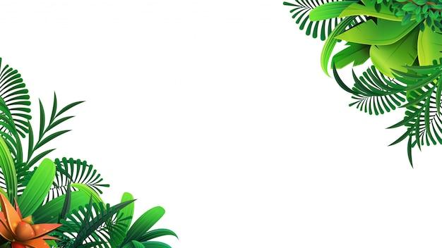 Um quadro de folhas tropicais em torno de um espaço vazio branco. elegante cenário decorado com folhagem de plantas exóticas da selva. Vetor Premium