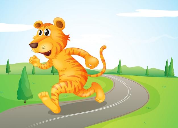Um tigre correndo na rua Vetor grátis