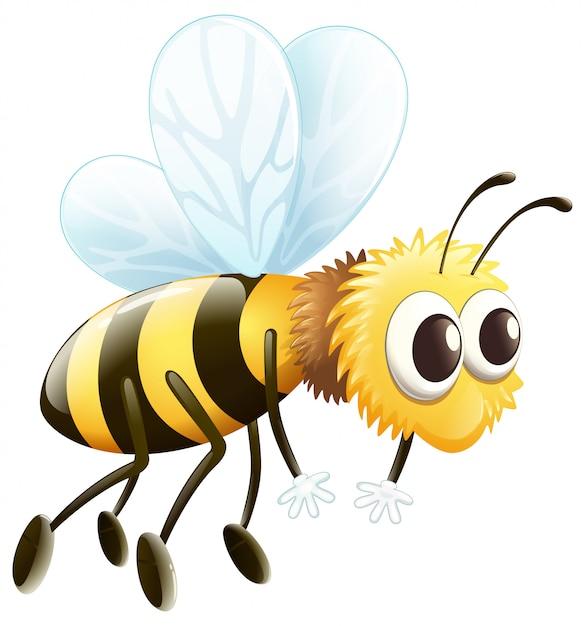 Uma abelha Vetor grátis