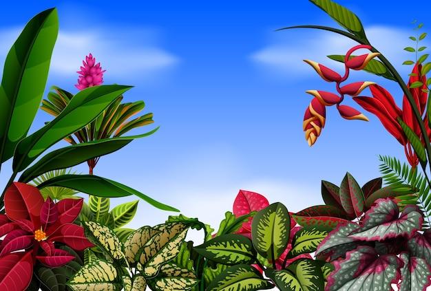Uma bela vista com as flores Vetor Premium