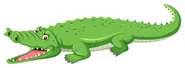 Uma boca aberta de crocodilo verde   Baixar vetores Premium e9504c9e9f