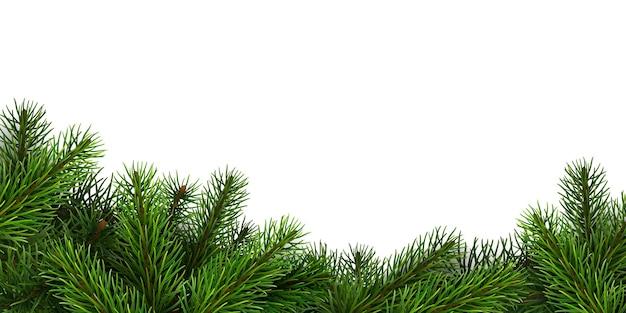 Uma borda de ramos de abeto realistas. plano de fundo para o natal Vetor Premium