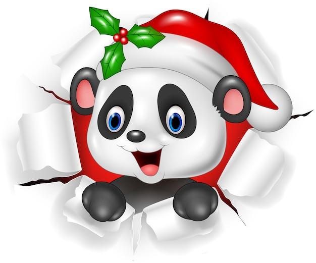 Urso de panda bebê dos desenhos animados, rasgando o fundo Vetor Premium