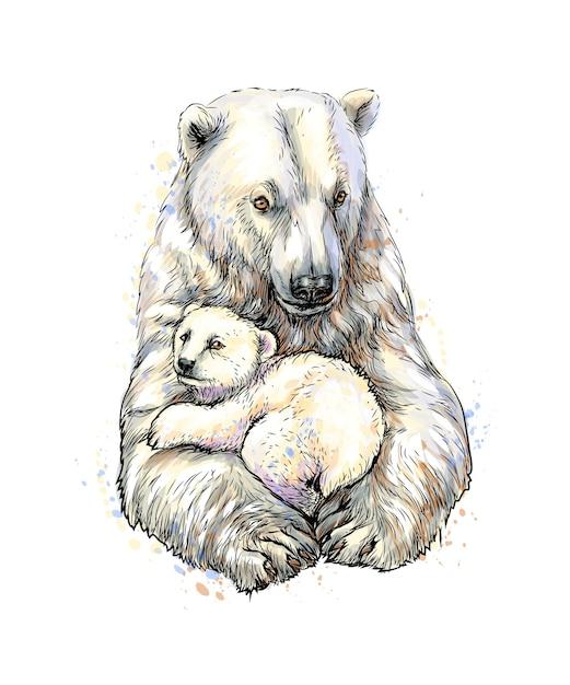 Urso polar com filhote de um toque de aquarela, esboço desenhado à mão. ilustração de tintas Vetor Premium