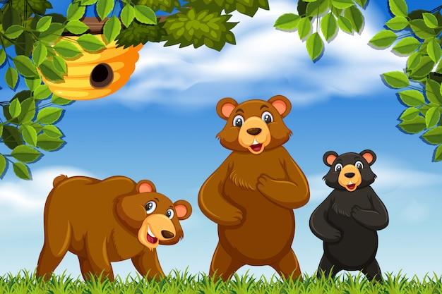 Ursos bonitos na cena da natureza Vetor Premium