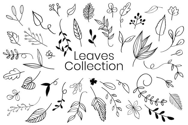 Várias folhas doodle vector coleção Vetor grátis