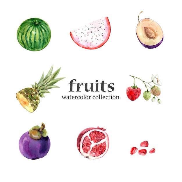 Várias frutas aquarela isoladas Vetor grátis