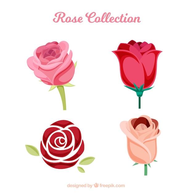 Várias rosas com diferentes tipos de desenhos Vetor grátis