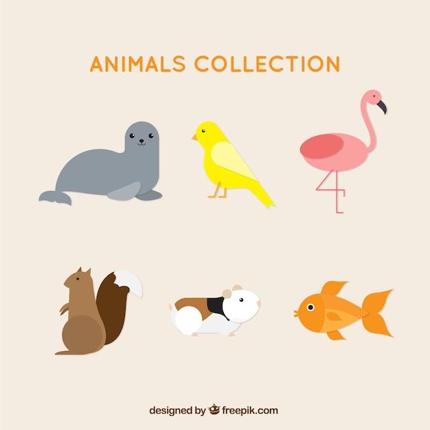Variedade de animais bastante plana Vetor grátis