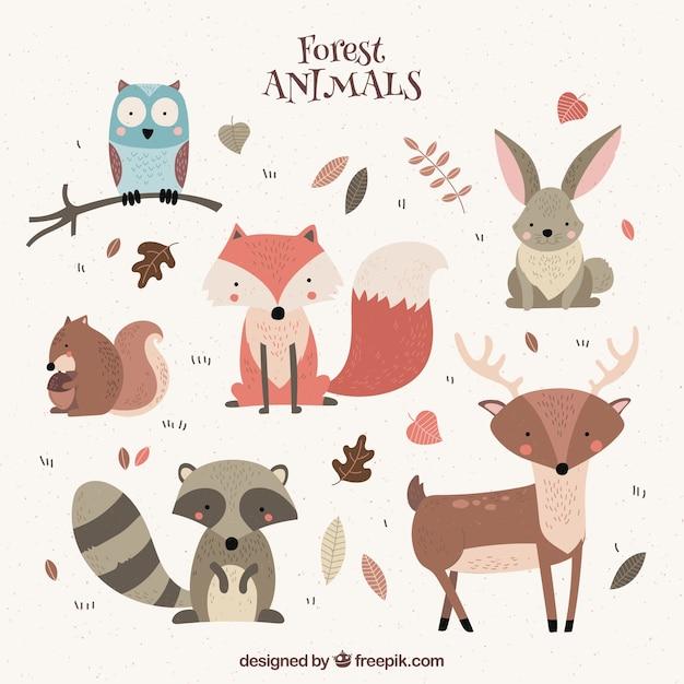 Vários animais selvagens agradáveis Vetor Premium