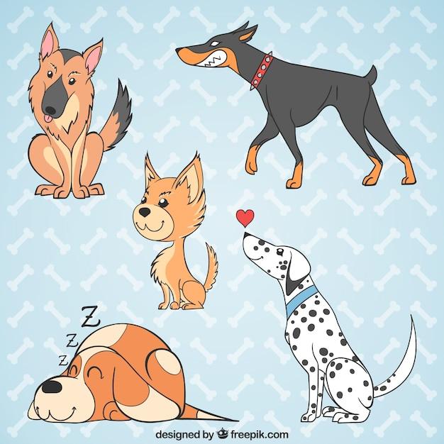 Vários cães desenhados à mão Vetor grátis