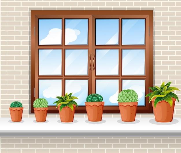 Vasos de plantas perto da janela Vetor grátis