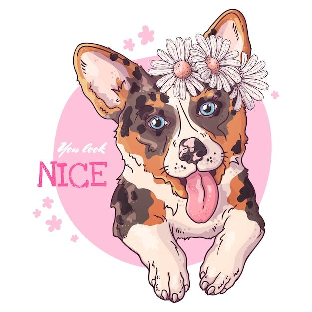 Vector esboçar ilustrações. retrato de um cão bonito corgi. Vetor Premium