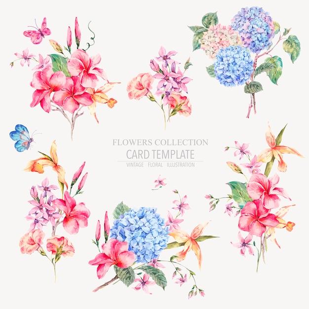 Vector vintage floral conjunto de hortênsias, orquídeas Vetor Premium