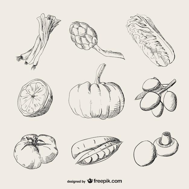 Vegetais de desenho realista Vetor grátis