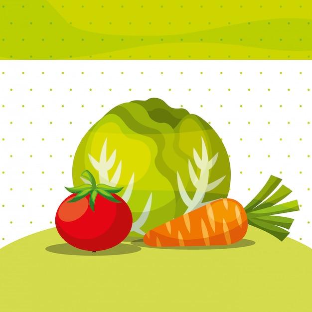 Vegetais frescos orgânicos alface saudável cenoura tomate Vetor Premium